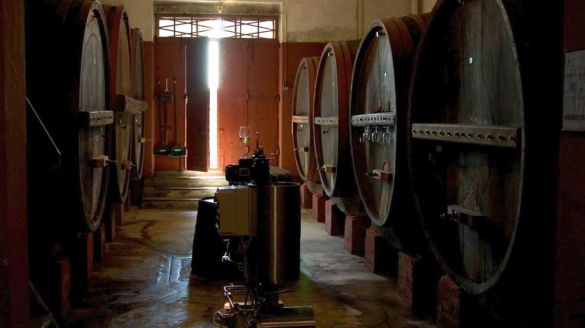 Bucci Cellar
