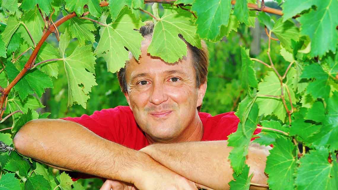 Fuligni Owner: Roberto Guerrini Fuligni