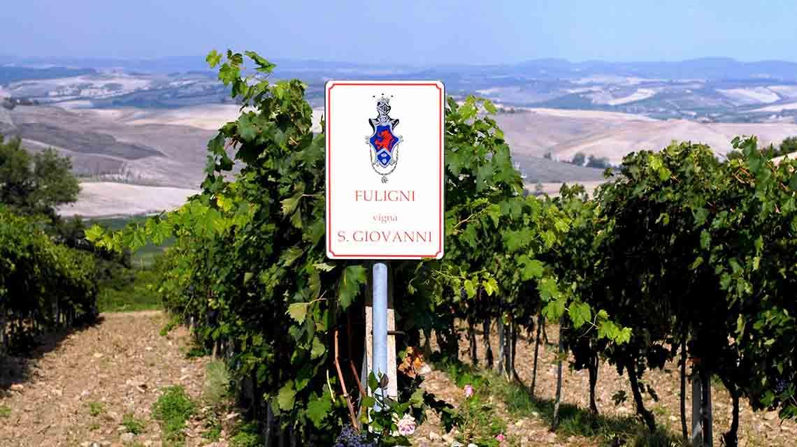 Fuligni Vineyards