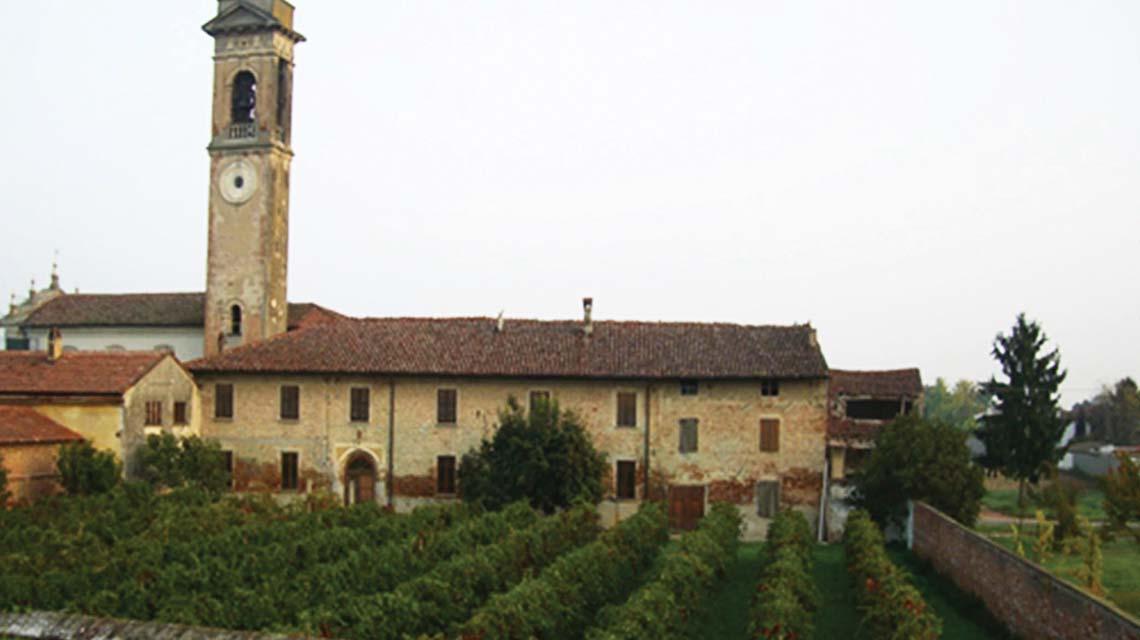 Molo 8 vineyards
