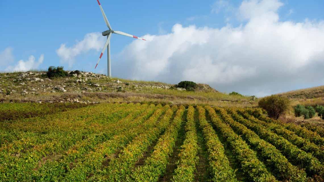 Vigneti Zabù Windmill