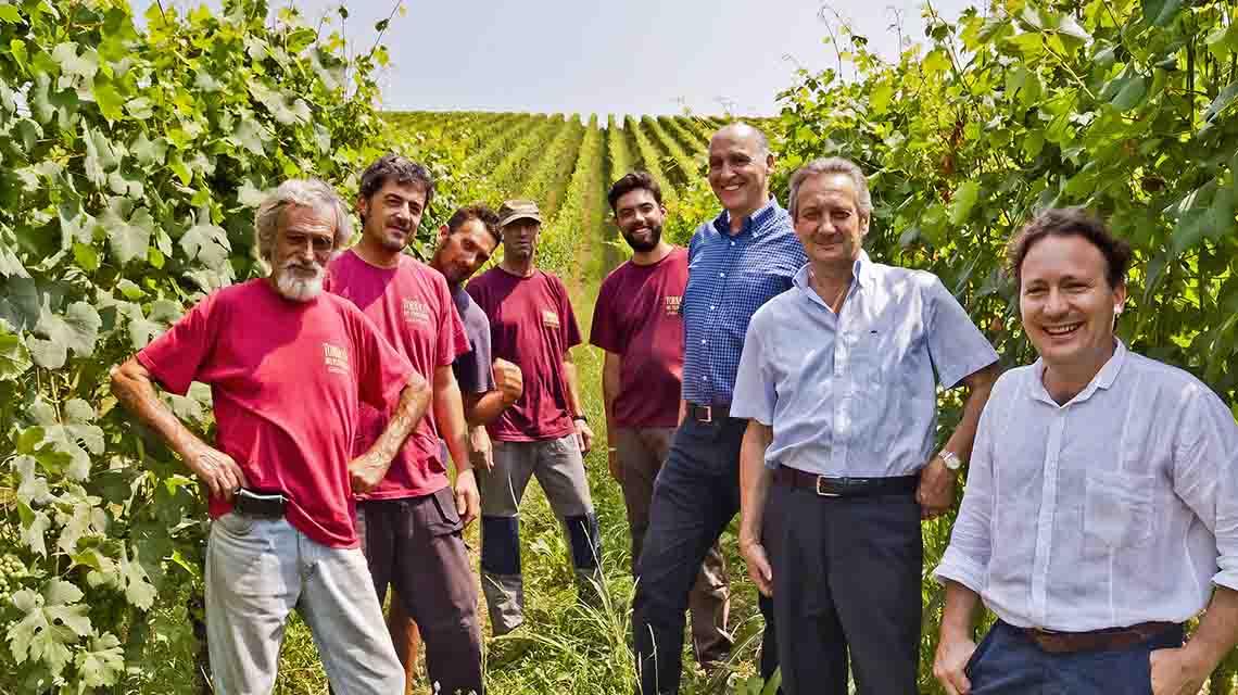 Torraccia Team in the Vineyard