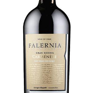 """Falernia Carménère Gran Reserva """"Pedriscal"""""""